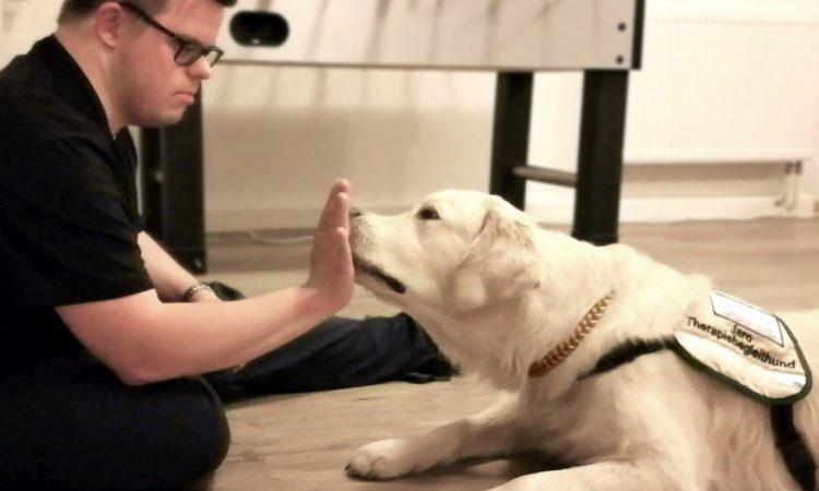 Auch die Körpersprache wird geschult - der Hund braucht klare Signale.
